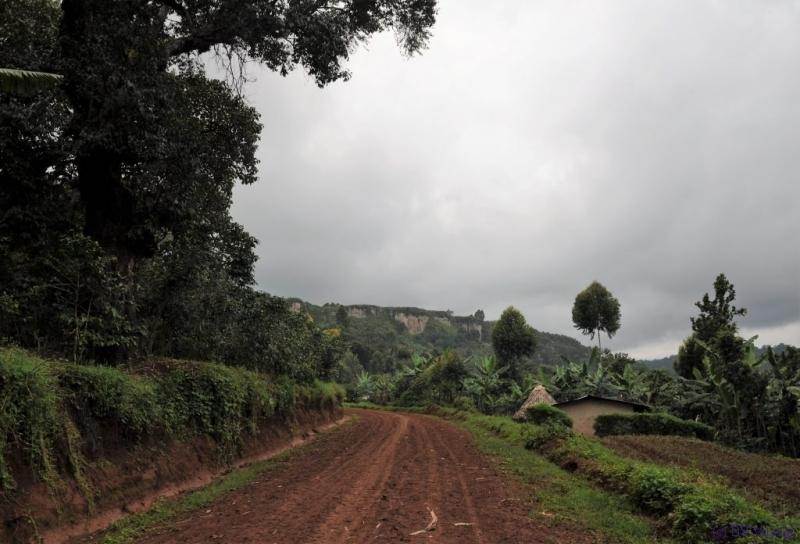 towards Mount Elgon National Park