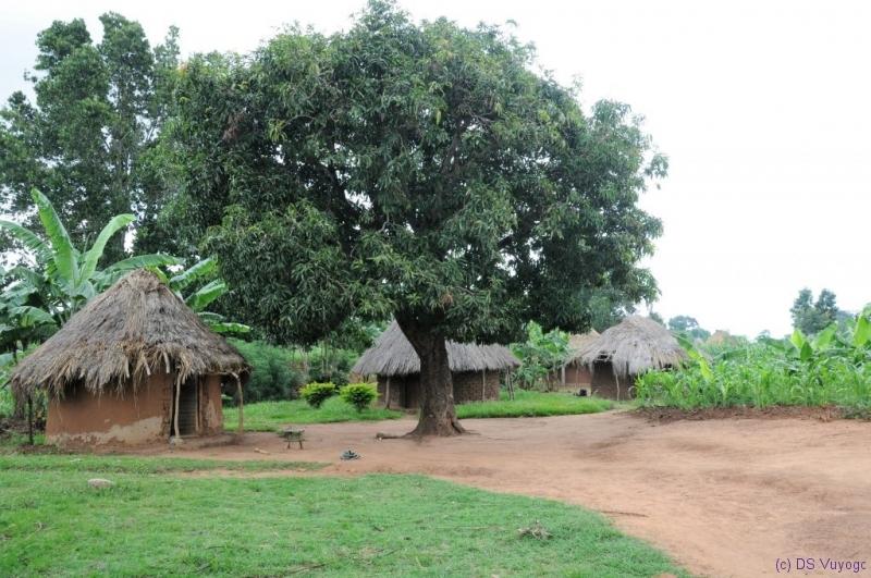 near Komuge