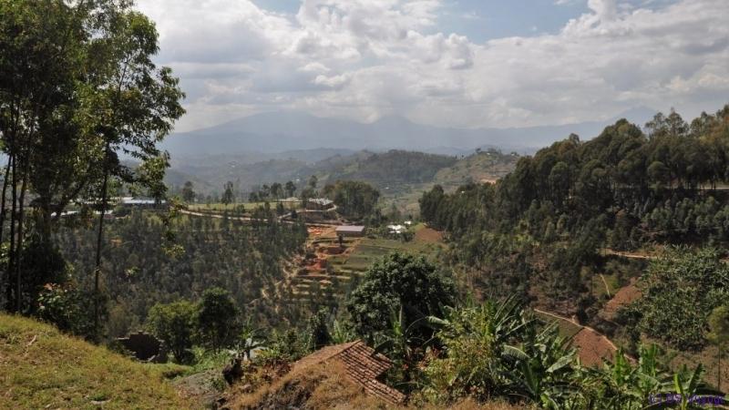 volcanos, north Rwanda