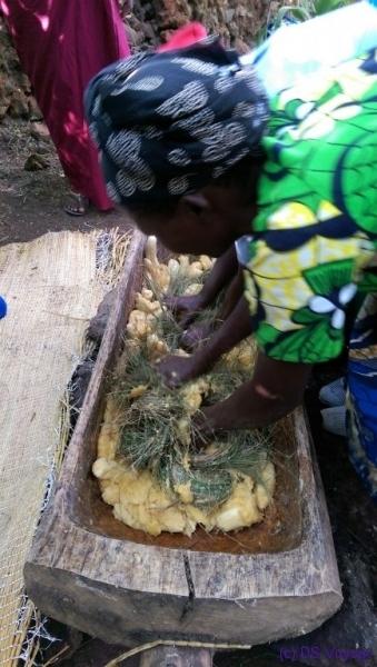 preparing urwagwa (banana beer), Redrocks Camp, Nyakinama near Musanze aka Ruhengeri, Rwanda
